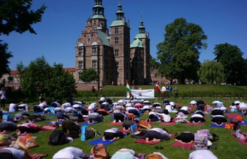 IDY 2017 in Denmark